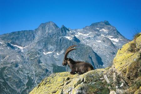 Alpi Marittime - Trekking