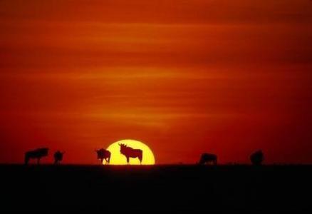 Tanzania - I parchi del Nord