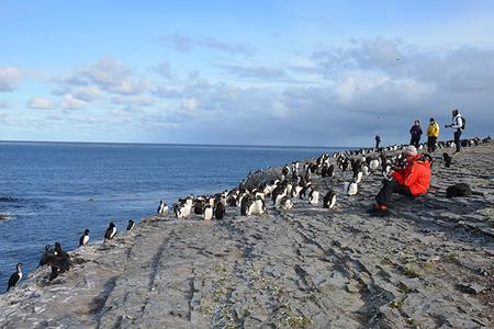 Falkland - Isla Malvinas, arcipelago sconosciuto