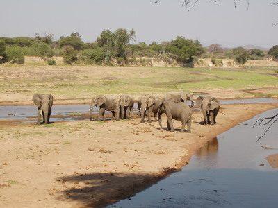 Tanzania - Il Sud e il Lago Malawi