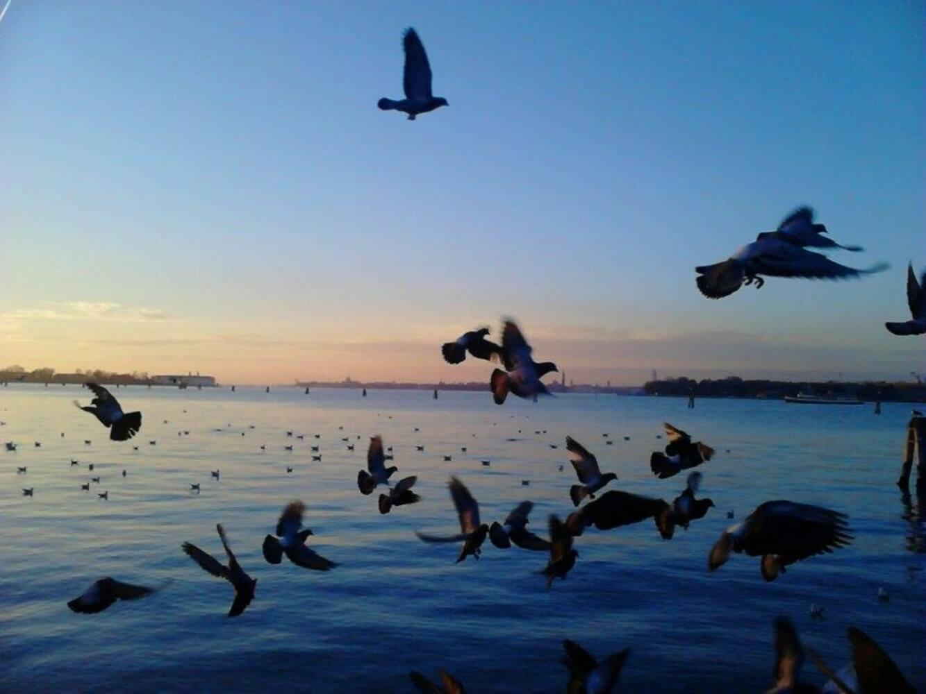 Veneto: Venezia e la sua laguna