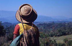 Guatemala  - Biodiversità