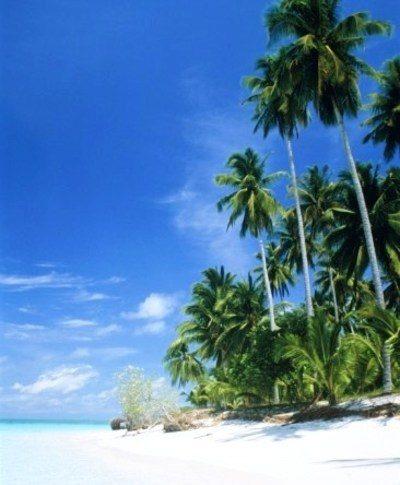 Malesia - Borneo